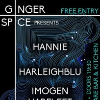 Harleighblu at Hoxton Square Bar & Kitchen on Wednesday 6th March 2019