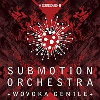 Submotion Orchestra at Hackney Arts Centre on Friday 15th February 2019