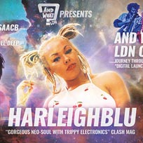 Harleighblu at Hootananny on Friday 13th March 2020